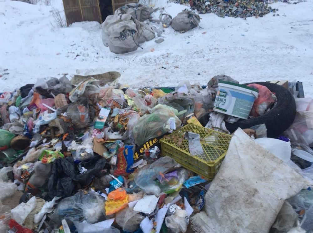 На полигоне около Больших Ключищ ветром разнесло мусор