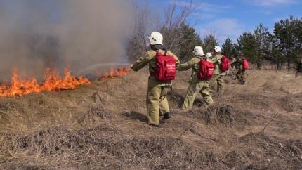 За сутки ульяновские пожарные 64 раза выезжали на тушение сухой травы на общей площади 63 га