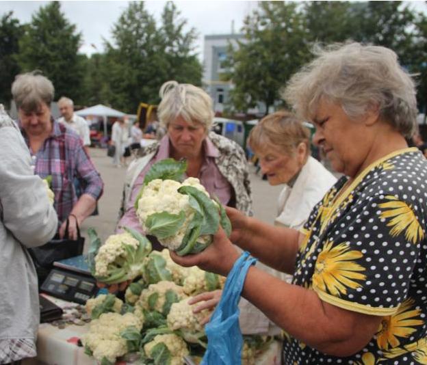 В Киндяковке пройдет ярмарка «День кочана»