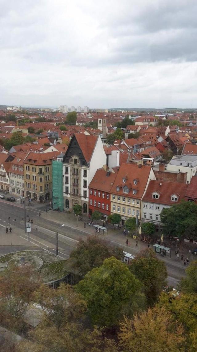 Коронавирус в Германии — последние новости сегодня 14 апреля 2020: Эпидемиолог предложил заразить всю молодежь, что происходит в стране